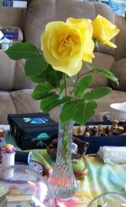 051116 Rose