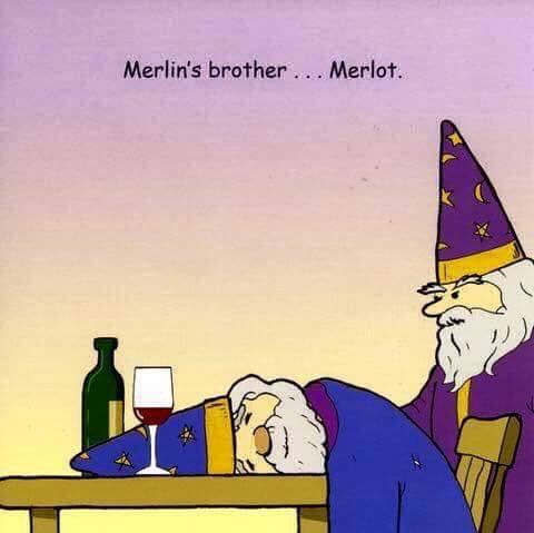 Merlin Merlot funny