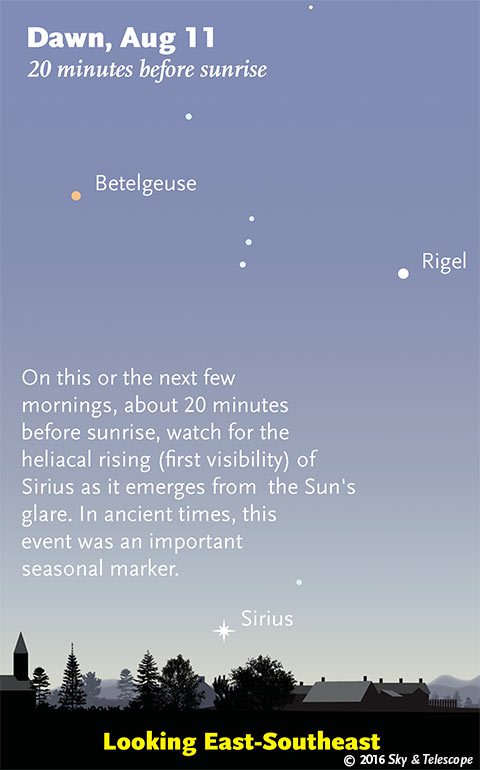 080916 Heliacal Sirius