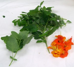 092516-herbs01