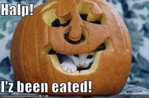 Eated funny hween