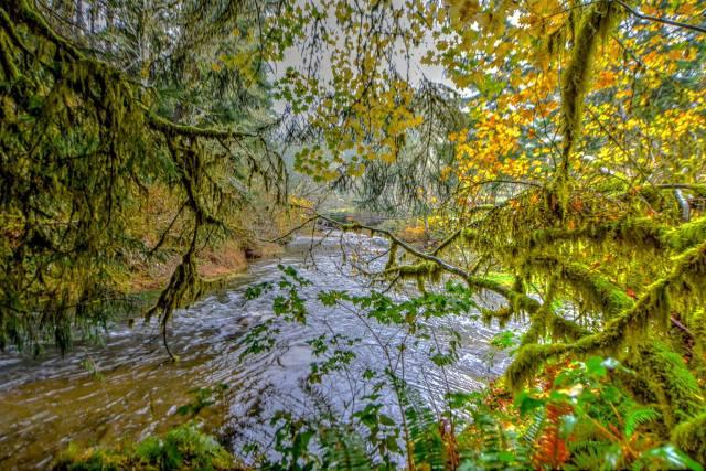 103016-ken-gagne-yachats-river