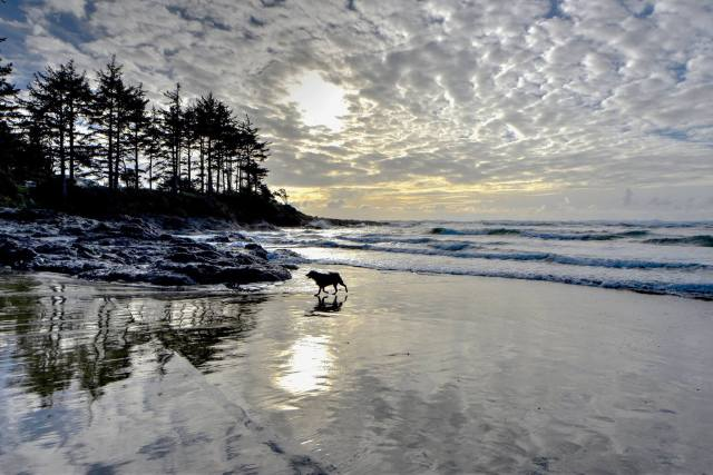 Yachats Bay mirror from 11/17/16 by Ken Gagne