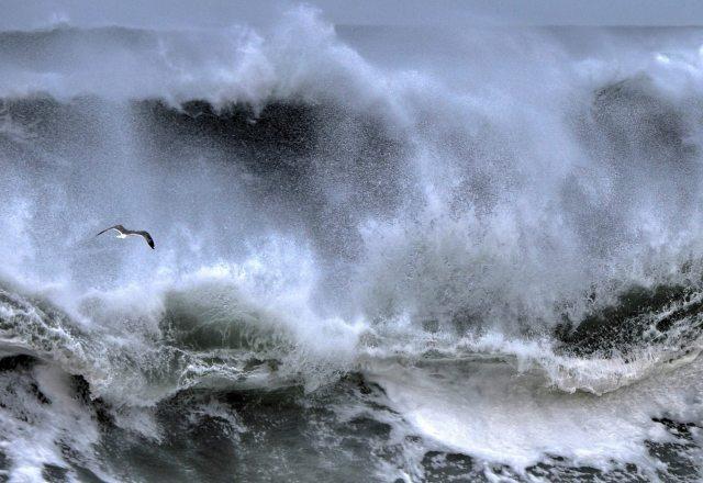 112916-ken-gagne-804-waves