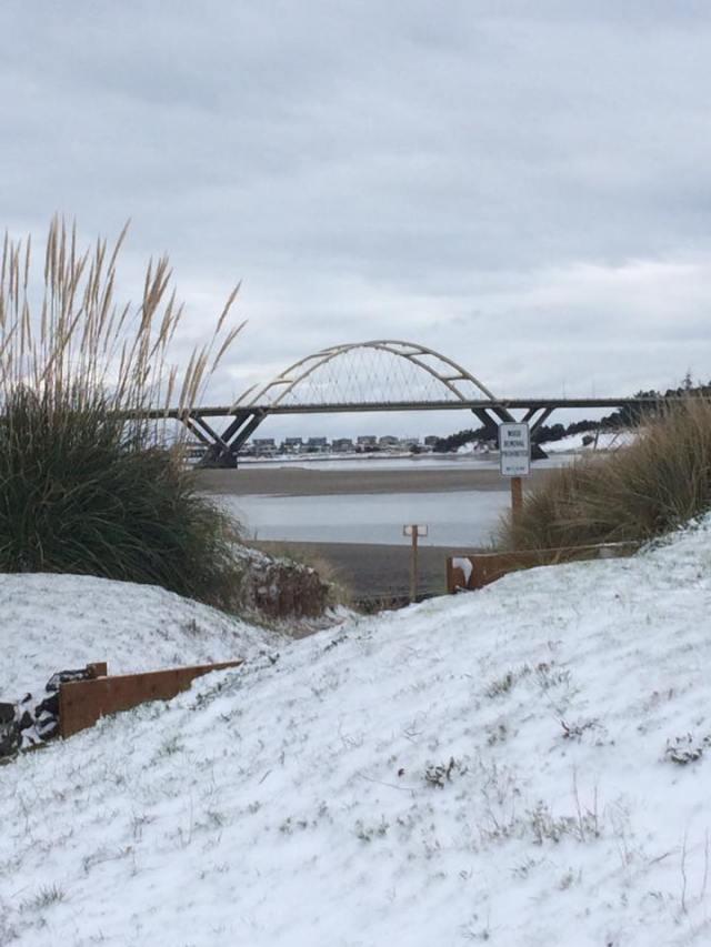 0101417-snow-shellie-thompson-gramz